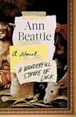 A Wonderful Stroke of Luck A Novel, Ann Beattie