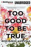 Too Good To Be True, Benjamin Anastas