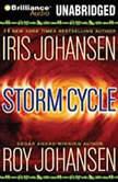 Storm Cycle, Iris Johansen