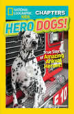 National Geographic Kids Chapters Hero Dogs: True Stories of Amazing Animal Heroes!, Mary Quattlebaum
