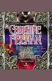 Dark Storm, Christine Feehan