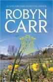Blue Skies, Robyn Carr