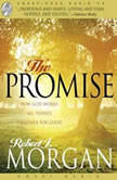 The Promise How God Works All Things Together For Good, Robert J. Morgan