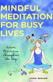 Mindful Meditation for Busy Lives Active Meditation Throughout the Day, Chris Berlow
