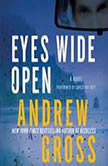 Eyes Wide Open, Andrew Gross