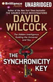 The Synchronicity Key The Hidden Intelligence Guiding the Universe and You, David Wilcock