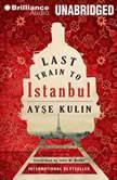Last Train to Istanbul, Ayse Kulin