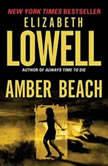 Amber Beach, Elizabeth Lowell