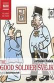 The Good Soldier Svejk, Jaroslav Hasek