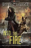 Into the Fire Age Of Madness - A Kurtherian Gambit Series, Michael Anderle