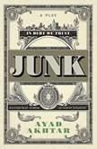 Junk A Play, Ayad Akhtar