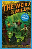 The Weird in the Wilds, Deb Caletti