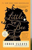 Little Bee, Chris Cleave