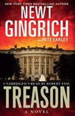 Treason, Newt Gingrich