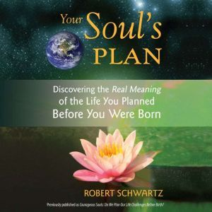 Your Soul's Plan Discovering the Real Meaning of the Life You Planned Before You Were Born, Robert Schwartz