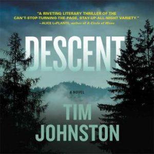 Descent, Tim Johnston