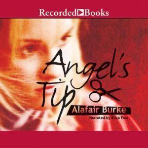 Angel's Tip, Alafair Burke