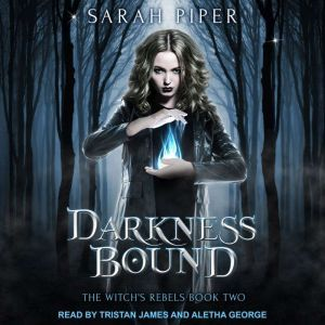 Darkness Bound: A Reverse Harem Paranormal Romance, Sarah Piper