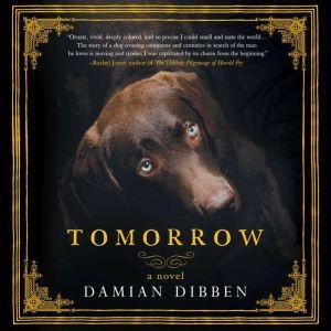 Tomorrow, Damian Dibben