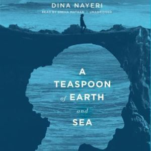 A Teaspoon of Earth and Sea, Dina Nayeri