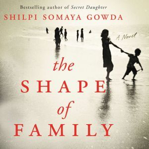 The Shape of Family A Novel, Shilpi Somaya Gowda