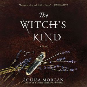 The Witch's Kind: A Novel, Louisa Morgan