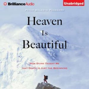 Heaven Is Beautiful How Dying Taught Me That Death Is Just the Beginning, Peter Baldwin Panagore