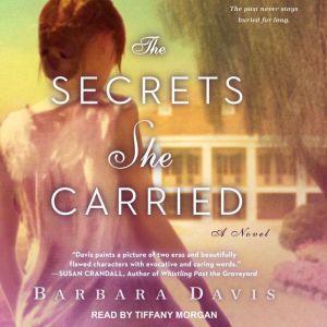 The Secrets She Carried, Barbara Davis