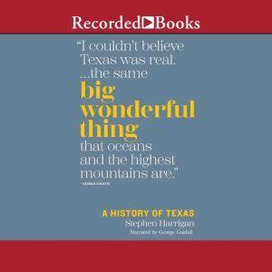 Big Wonderful Thing, Stephen Harrigan