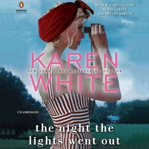 The Night the Lights Went Out, Karen White