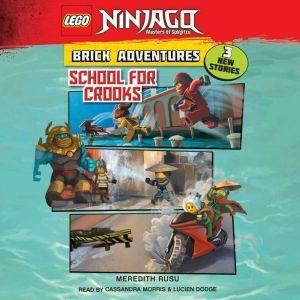 LEGO Ninjago: Brick Adventures #2: School for Crooks, Meredith Rusu