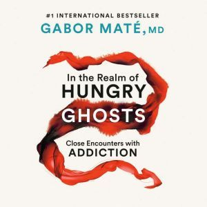 In the Realm of Hungry Ghosts Close Encounters with Addiction, Gabor Mate