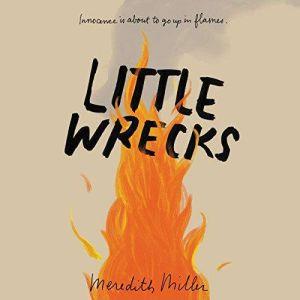 Little Wrecks, Meredith Miller