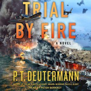 Trial by Fire A Novel, P.T. Deutermann