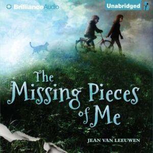 The Missing Pieces of Me, Jean Van Leeuwen