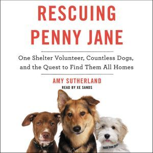Rescuing Penny Jane: One Shelter Volunteer, Countless Dogs, and the Quest to Find Them All Homes, Amy Sutherland