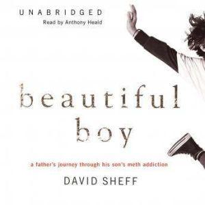 Beautiful Boy: A Father's Journey through His Son's Meth Addiction, David Sheff