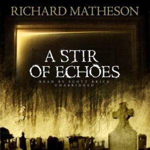 A Stir of Echoes, Richard Matheson