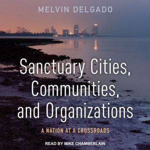 Sanctuary Cities, Communities, and Organizations: A Nation at a Crossroads, Melvin Delgado