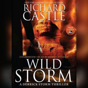 Wild Storm: A Derrick Storm Thriller, Richard Castle