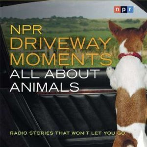 NPR Driveway Moments All About Animals: Radio Stories That Won't Let You Go, Steve Inskeep