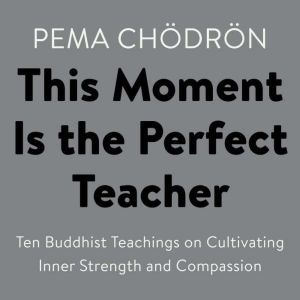 This Moment Is the Perfect Teacher Ten Buddhist Teachings on Cultivating Inner Strength and Compassion, Pema Chodron