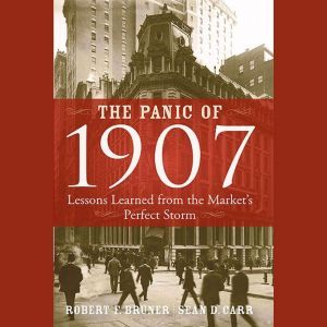 The Panic of 1907: Lessons Learned from the Market's Perfect Storm, Robert F. Bruner