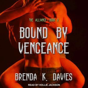 Bound by Vengeance, Brenda K. Davies