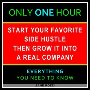 The First Steps to Starting Your New Business From Nothing Volume 2: Start Your Dream Business Now Even if You Are in Debt and Making Minimum Wage, Zane Rozzi