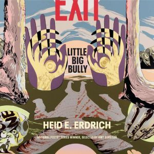 Little Big Bully, Heid E. Erdrich