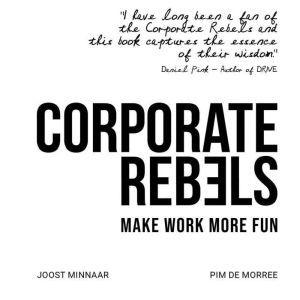 Corporate Rebels Make work more fun, Joost Minnaar