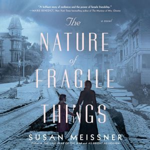 The Nature of Fragile Things, Susan Meissner