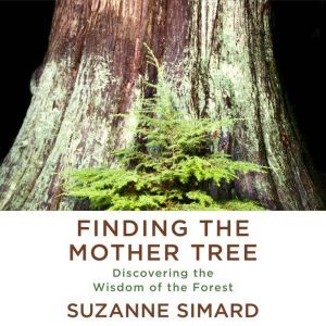 Finding the Mother Tree Discovering the Wisdom of the Forest, Suzanne Simard