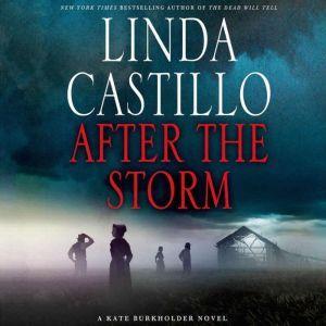 After the Storm: A Kate Burkholder Novel, Linda Castillo